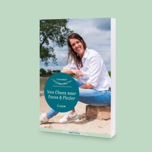 E-book: Van chaos naar focus en plezier van Coachnest
